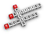 Skills, Knowledge, Abilities poster