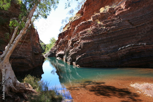 Hamersley Gorge, Karijini National Park - 29732755