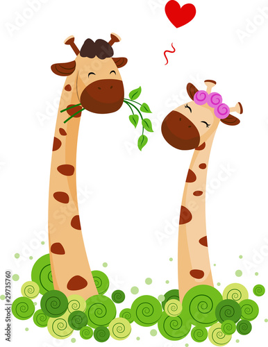 Giraffe Couple