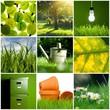 Green concept - Spring gardening