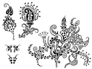 set of floral elements,  vector illustration