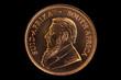 Krugerrand Paul Kruger Goldmünze freigestellt