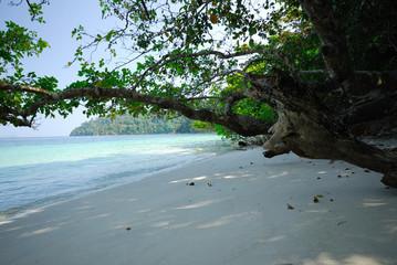 Tarutao, Tropical Beach, National Marine Park