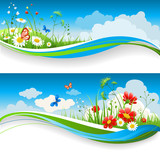 Fototapety Summer floral banners