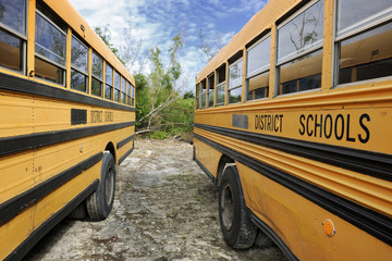 Parked yellow school buses in Governor's Harbour