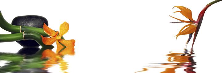 Bannière galet, bambous et fleurs orange