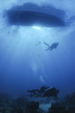 silouetted scuba divers desend on a dive poster