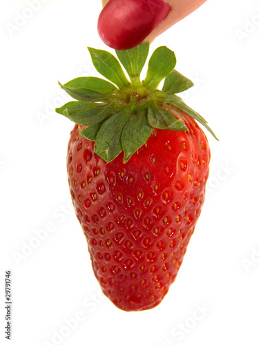 Large strawberries in a female hand isolated on white background