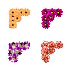 Flowers Photo Corners