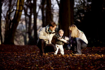 A child looking at a leaf with his parents in the park