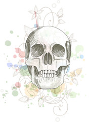 Skull sketch & floral calligraphy ornament - a stylized orchid,