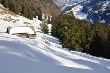 Winterlandschaft Toggenburg