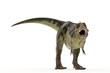 green tyrannosaurus fatsaurus