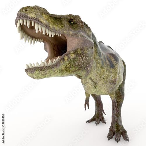 Fototapeten,dinosaurier,räuber,grün,groß