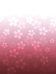Abstract cherry blossom background illustration