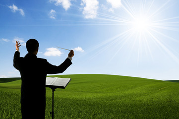Conductor and field