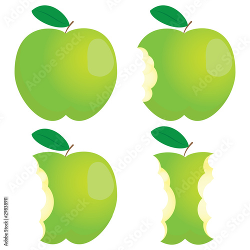 Green nibbled apple. Different states