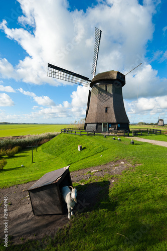 beautiful windmill landscape in the Netherlands