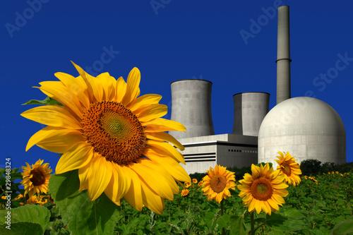 Leinwandbild Motiv Atomkraftwerk hinter einem Sonnenblumenfeld