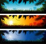 Fototapety Jungle banner