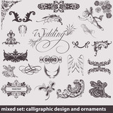 calligraphic design and ornaments