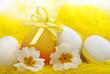 uova  pasquali con primule