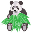 Panda with bamboo leaves on white