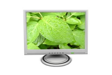 LCD Flat Screen Monitor Green Leaf