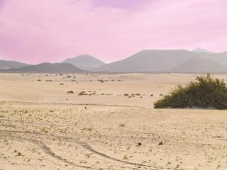 Dunas del norte de Fuerteventura, Canarias,España