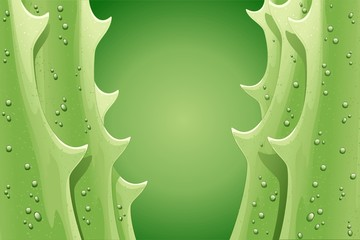 Cactus Aloe Vera Foglia Sfondo-Aloe Leaf Background-Vector