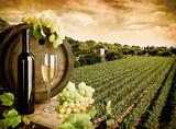 Wine and vineyard in vintage style - 29883743