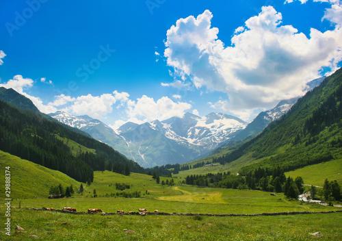 Romantische Naturlandschaft