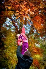 little girl in the autumn park