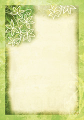 Paper with Green Abstract Floral Border