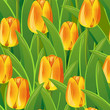 Seamless from tulips