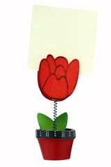 isolated flower shape message holder with copyspace