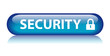 SECURITY Button (internet web secured access padlock icon virus)
