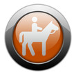 "Orange Metallic Orb Button ""Horse Trail"""