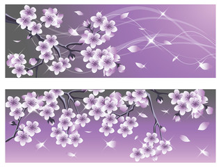 Spring Cherry blossom banner. vector illustration
