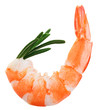 Cooked unshelled tiger shrimp with rosemary twig