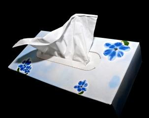 White hygienic handkerchief in box