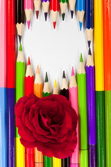 RED ROSE ON MULTICOLORED PENCILS