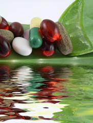 capsules, gélules et comprimés sur feuille d'aloe vera