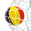 Belgian soccer ball inside the net
