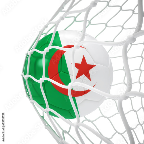 Algerian soccer ball inside the net