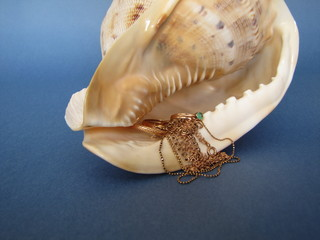 морской клад