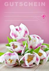 geschenk-gutschein in rosa