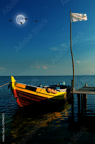 Foto op Plexiglas Volle maan Boat in moonlight