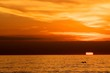 Sunrise/Sunset with bird