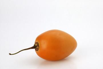 Solanum betaceum Tomate de árbol